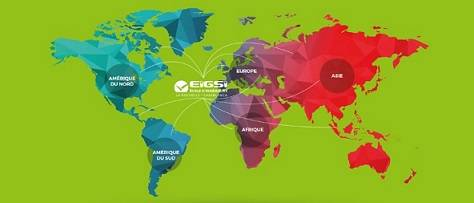 Réseau international - EIGSI